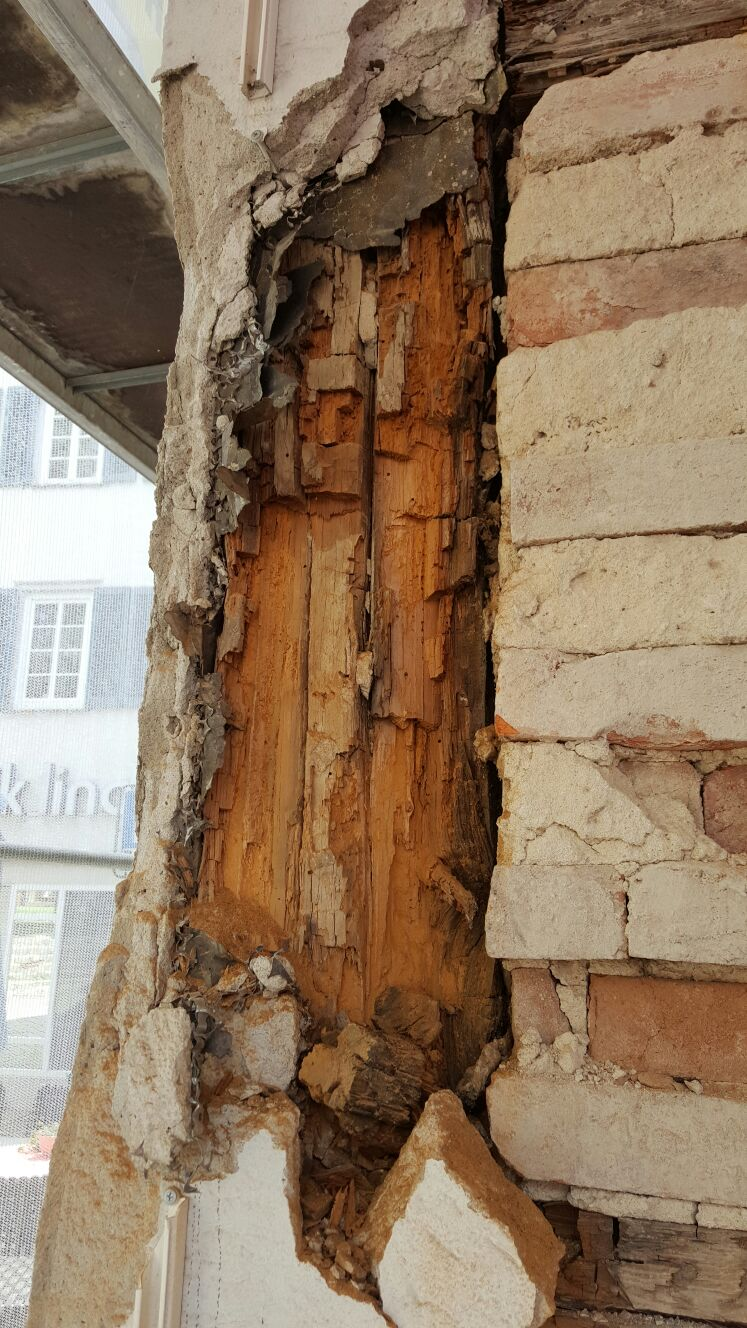 Haus Reparaturen Sanierung Wintercheck